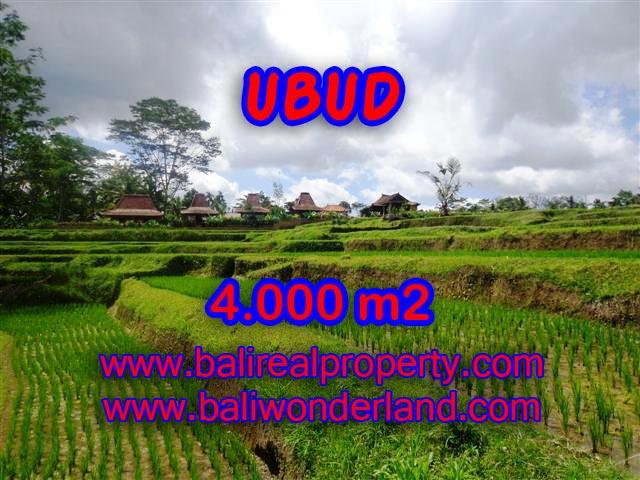 Tanah di Ubud dijual 4.000 m2 view sawah dan sungai di Dekat sentral Ubud