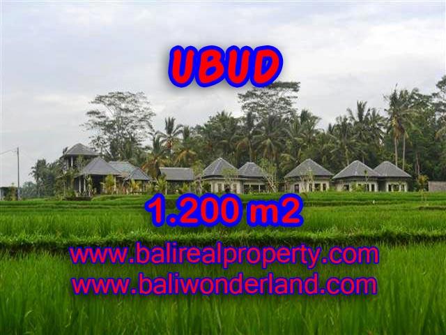 DIJUAL TANAH DI BALI, MURAH DI UBUD RP 3.850.000 / M2 - TJUB365