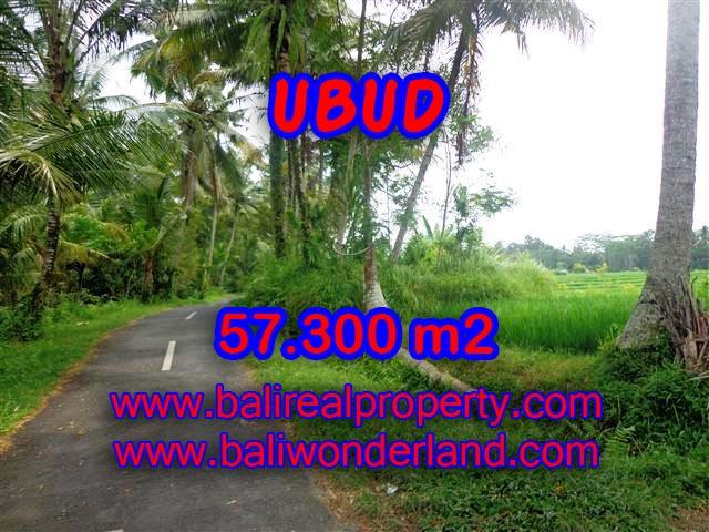 Jual Tanah murah di UBUD TJUB377 - investasi property di Bali