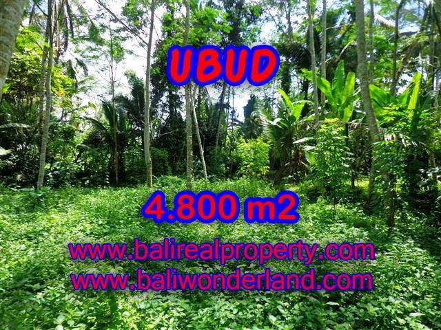 DIJUAL MURAH TANAH DI UBUD TJUB382 - INVESTASI PROPERTY DI BALI