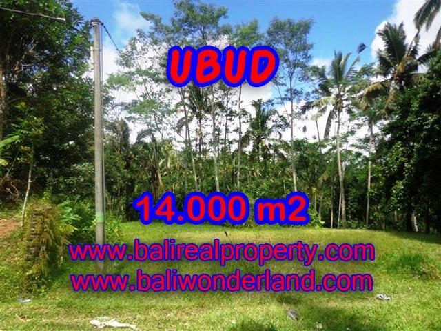 Tanah dijual di Ubud 14.000 m2 view alami dekat sungai di Ubud Payangan