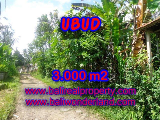 Tanah di Ubud Bali dijual 3.000 m2 view tebing