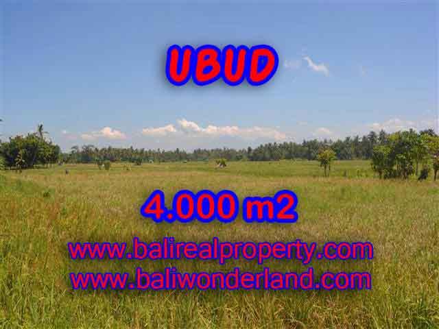 Murah ! Tanah di UBUD Bali Dijual TJUB387 - investasi property di Bali