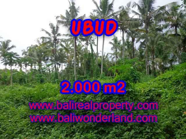 Investasi Properti di Bali - Murah ! Tanah di UBUD Bali Dijual TJUB397