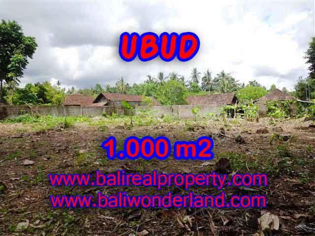 TANAH DIJUAL DI BALI, MURAH DI UBUD HANYA RP 4.850.000 / M2