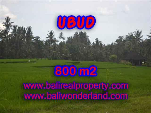 DIJUAL TANAH DI UBUD BALI MURAH TJUB396