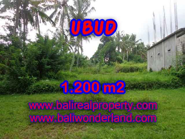 INVESTASI PROPERTI DI BALI - TANAH DIJUAL DI UBUD CUMA RP 3.850.000 / M2