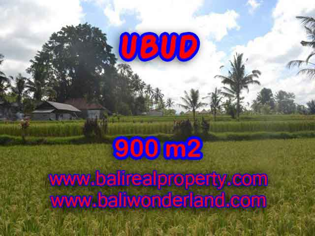 DIJUAL TANAH MURAH DI UBUD BALI TJUB412 - KESEMPATAN INVESTASI PROPERTY DI BALI