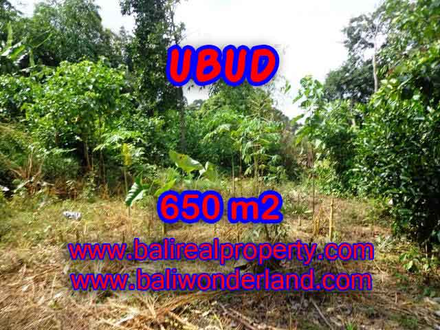 Peluang Investasi Properti di Bali - Jual Tanah murah di UBUD TJUB417