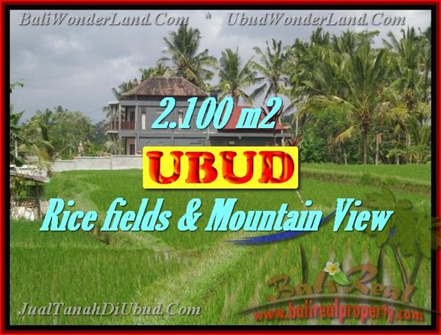 TANAH DIJUAL DI BALI, MURAH DI UBUD RP 1.950.000 / M2 - TJUB423 - INVESTASI PROPERTY DI BALI