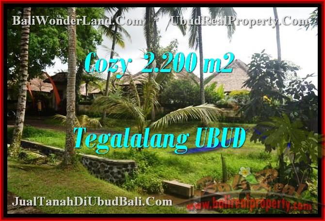 TANAH MURAH di UBUD 22 Are View Sawah dan sungai link Villa