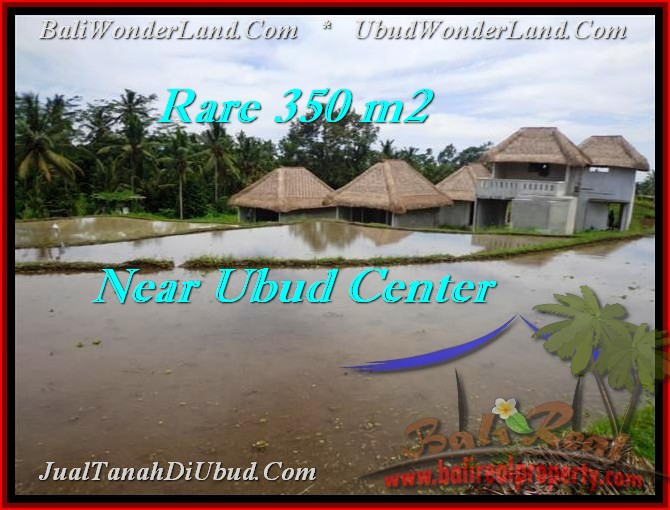 TANAH di UBUD JUAL 3.5 Are View sawah link villa