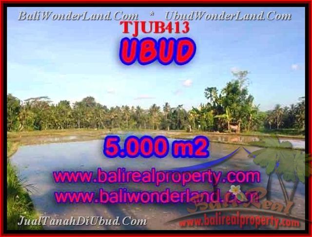 TANAH DIJUAL di UBUD 5,000 m2 di Ubud Payangan