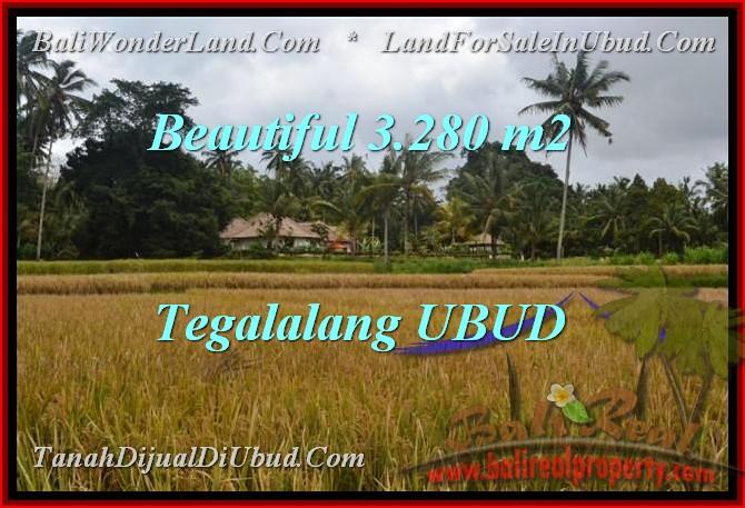 TANAH JUAL MURAH UBUD BALI 32.8 Are View Sawah link Villa