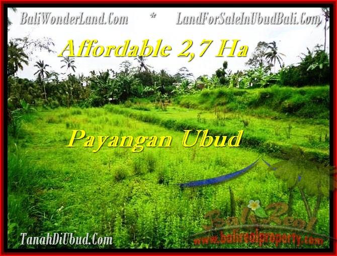 JUAL MURAH TANAH di UBUD 270 Are View Kebun dan tebing, sungai