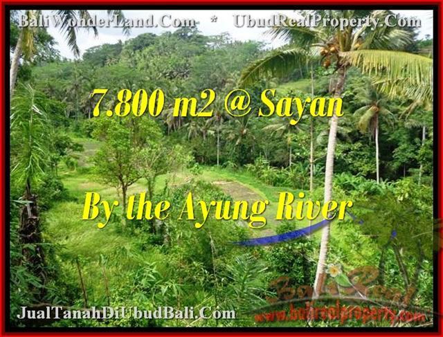 TANAH di UBUD BALI DIJUAL 7,800 m2  View tebing,sawah,sungai ayung
