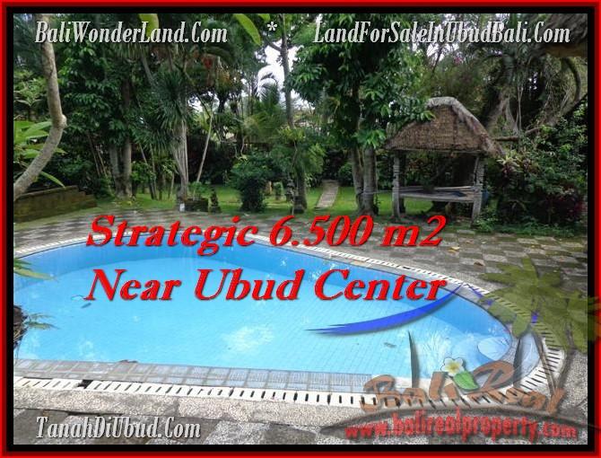 JUAL MURAH TANAH di UBUD BALI Untuk INVESTASI TJUB479