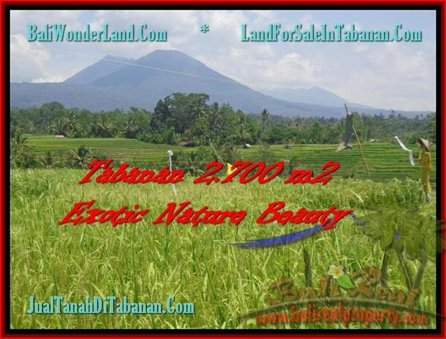 TANAH di UBUD BALI DIJUAL 6,500 m2 di Ubud Tegalalang