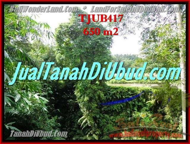 TANAH MURAH di UBUD Untuk INVESTASI TJUB417