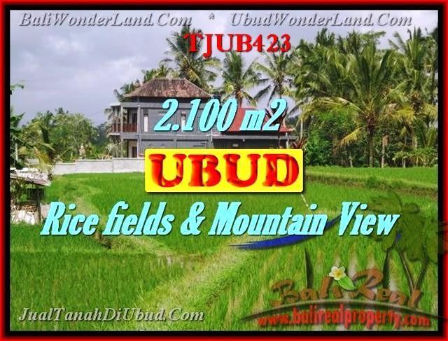 DIJUAL TANAH MURAH di UBUD 21 Are di Ubud Tegalalang