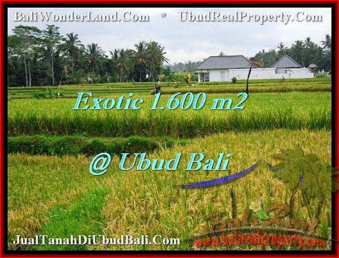 JUAL MURAH TANAH di UBUD 1,600 m2  View sawah lingkungan villa
