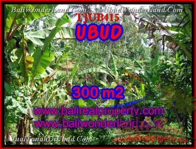 TANAH MURAH di UBUD Untuk INVESTASI TJUB415