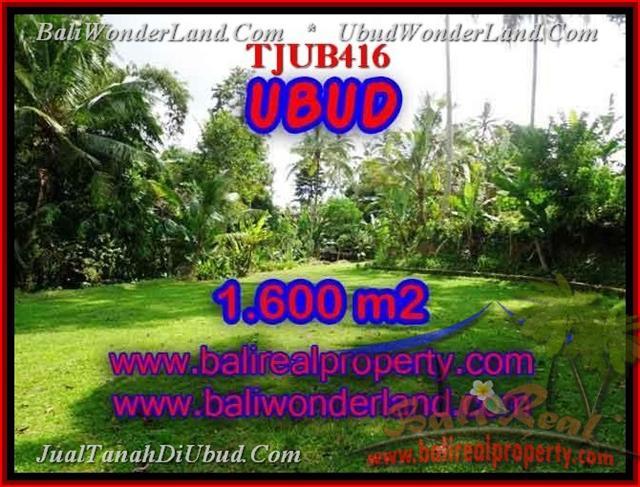 TANAH DIJUAL MURAH di UBUD BALI 16 Are di Sentral Ubud
