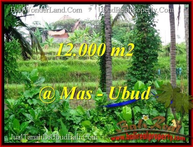 DIJUAL TANAH MURAH di UBUD Untuk INVESTASI TJUB492