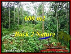 TANAH JUAL MURAH  UBUD BALI 600 m2  View Tebing dan kebun