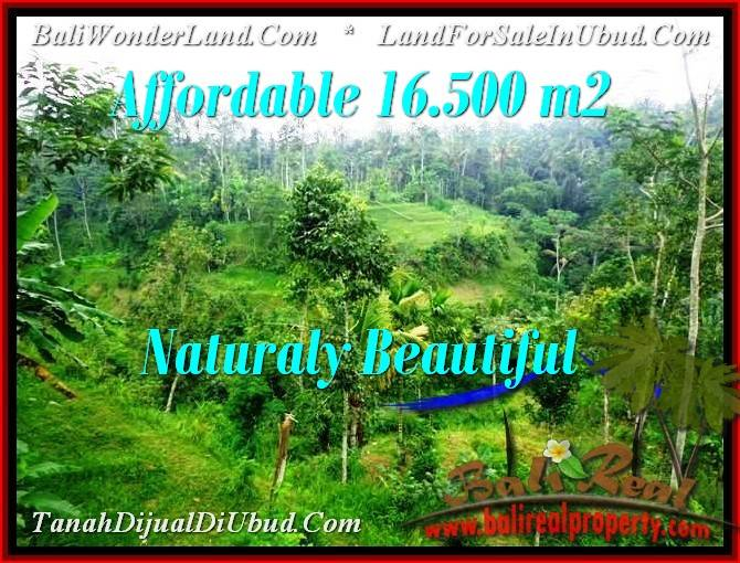 TANAH JUAL MURAH  UBUD BALI 16,500 m2  View Tebing dan sungai