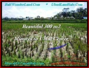 JUAL MURAH TANAH di UBUD Untuk INVESTASI TJUB500