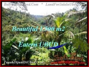 JUAL TANAH di UBUD BALI 15 Are View Tebing dan sungai besar
