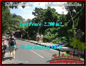 DIJUAL TANAH di UBUD BALI 22 Are di Sentral Ubud
