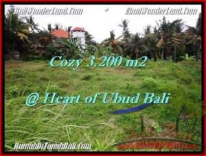 TANAH JUAL MURAH  UBUD 3,200 m2  Dekat Monkey forest