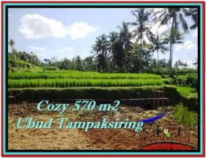 TANAH DIJUAL MURAH di UBUD BALI 570 m2 di Ubud Tampak Siring