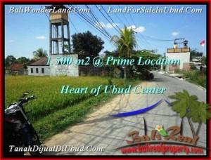 TANAH MURAH di UBUD BALI 1,500 m2  View  Sawah link Villa