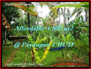 TANAH DIJUAL MURAH di UBUD 48 Are di Ubud Payangan