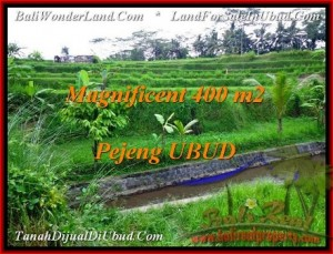 TANAH di UBUD DIJUAL 400 m2 di Ubud Pejeng