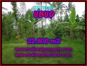 DIJUAL TANAH MURAH di UBUD Untuk INVESTASI TJUB409