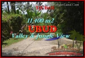TANAH MURAH di UBUD BALI 114 Are View hutan dan Tebing