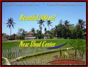 TANAH JUAL MURAH  UBUD BALI 3 Are View sawah link villa