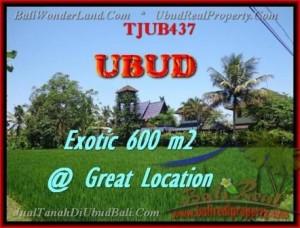 TANAH MURAH di UBUD Untuk INVESTASI TJUB437
