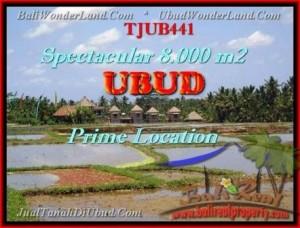 TANAH DIJUAL di UBUD TJUB441