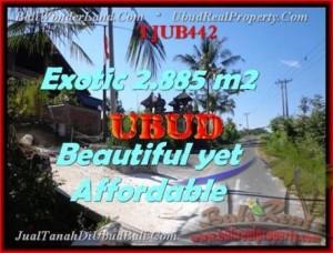 TANAH DIJUAL di UBUD 2.885 m2 di Ubud Pejeng