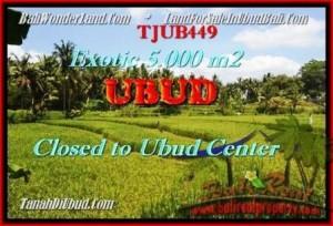 JUAL MURAH TANAH di UBUD BALI Untuk INVESTASI TJUB449