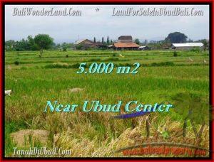 TANAH DIJUAL di UBUD 5,000 m2 di Ubud Center