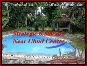 DIJUAL TANAH MURAH di UBUD TJUB479