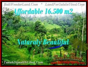 DIJUAL TANAH di UBUD BALI 16,500 m2 di Ubud Tampak Siring