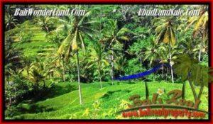 DIJUAL TANAH di UBUD BALI 2,500 m2 di Ubud Tegalalang