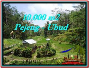 TANAH MURAH JUAL di UBUD BALI 10,000 m2 View Sawah, Kolam, Pancoran